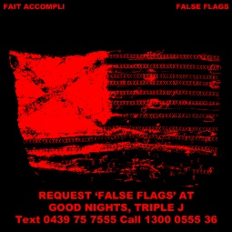 FALSE FLAGS GOOD NIGHTS